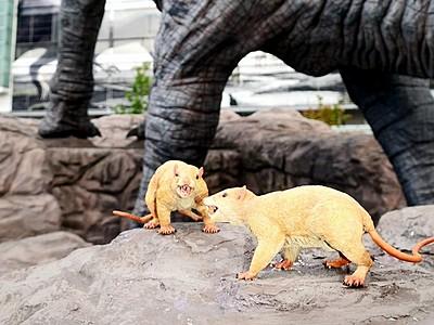 名前は「フカチュー」でいい? 恐竜広場にモニュメント3体