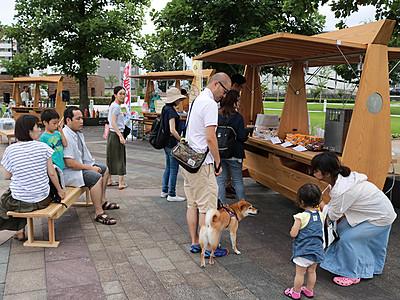 環水公園でナイトアートワゴン 富山県美術館開館直前イベント