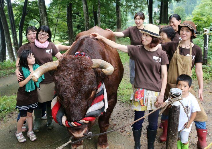 おそろいのTシャツを着て、闘牛の周りに並ぶ女子部のメンバー=12日、長岡市の山古志闘牛場