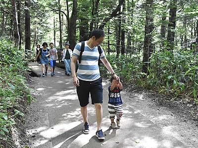 上高地の遊歩道、改修工事終わる 「森林浴楽しんで」