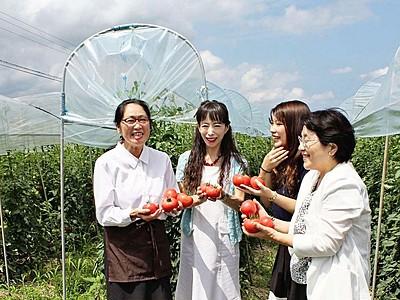 妙高市産高原トマト使い特別メニュー 9月、25店で提供