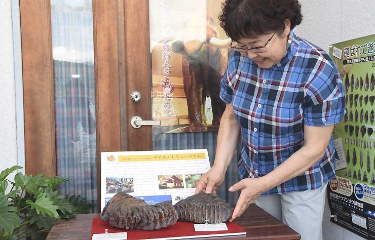 大野さんが店の前に展示しているナウマンゾウの奥歯の化石のレプリカ