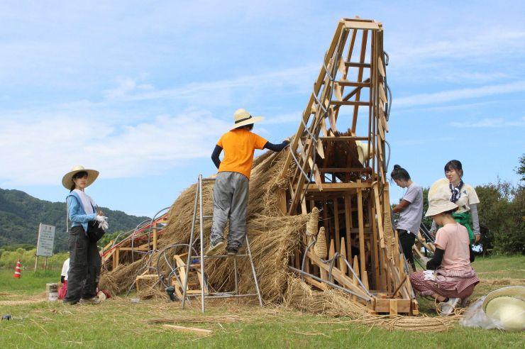 制作が進むワニのわらアート=30日、新潟市西蒲区の上堰潟公園