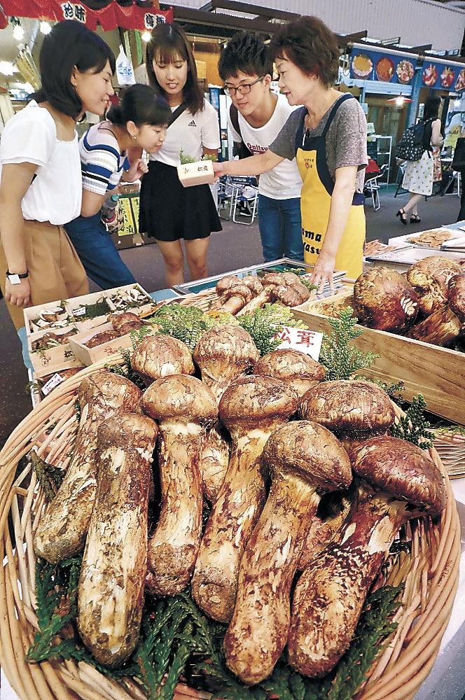 店頭に並んだマツタケを品定めする客=金沢市の近江町市場