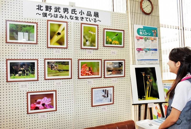 生き物の命をテーマにした写真が並ぶ作品展=4日、福井市上野町の福井信用金庫川西支店