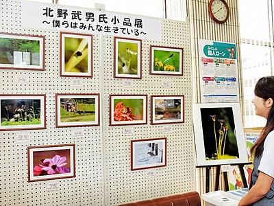命の大切さ写真で訴え 福井信金川西支店で作品展