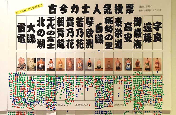 企画展会場で行われている力士の人気投票。緑色が市外、赤色が市内、青色が県外の人が投じた票