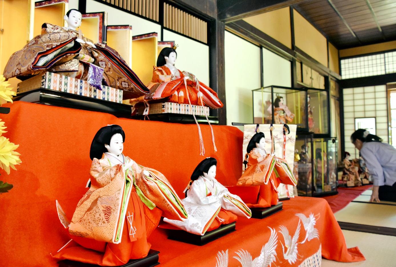 ひな人形や日本人形が並ぶ重陽の節句展=8日、大野市城町の武家屋敷旧田村家