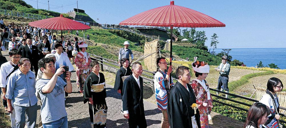 秋晴れの下、繰り広げられた花嫁行列=輪島市の白米千枚田