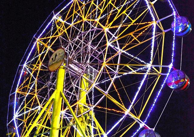 ライトアップされた大観覧車=24日夜、福井県越前市武生中央公園