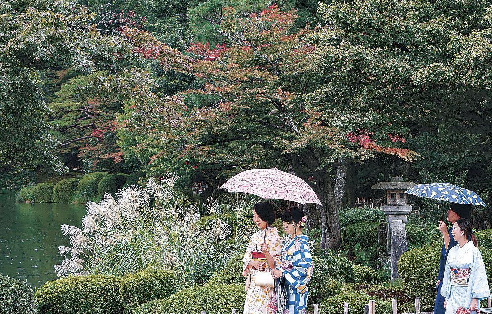 雨の中、秋の気配が漂う園内を散策する観光客=兼六園