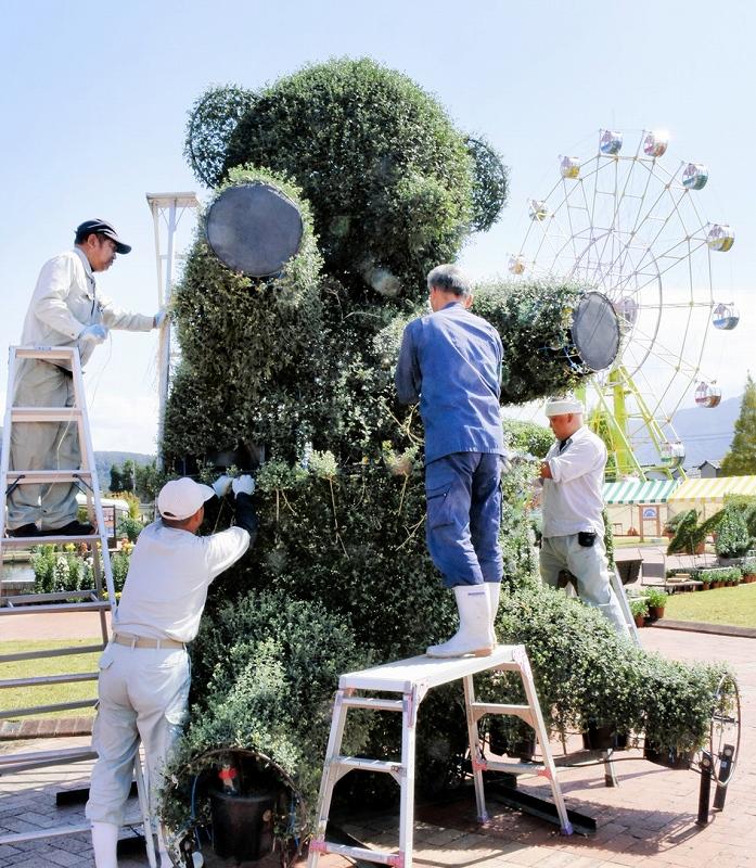 菊を用いたクマの形の造形物を設置する越前市職員ら=29日、福井県越前市武生中央公園