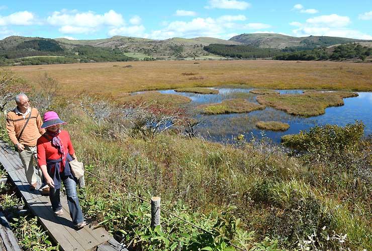 草木が秋色に染まった八島ケ原湿原