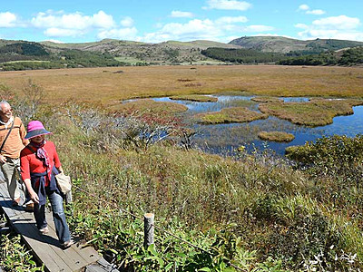 八島ケ原湿原、ぬくもり色 草紅葉の季節到来