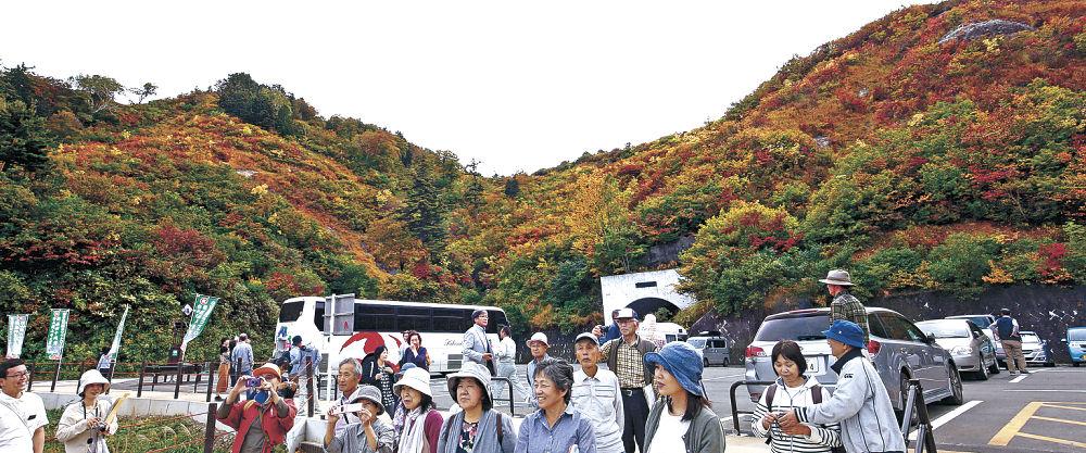 紅葉を楽しむ観光客=白山白川郷ホワイトロード三方岩駐車場