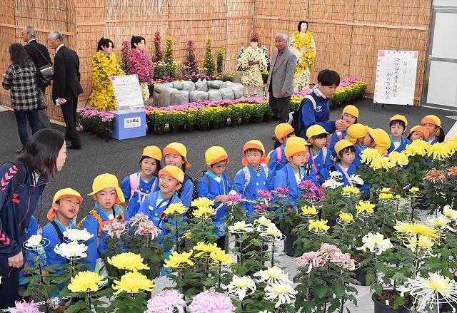色とりどりの菊花で彩られた会場を見学する子どもたち=5日、福井県越前市の武生中央公園