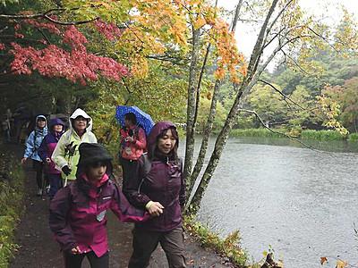 軽井沢の秋、雨中歩き楽しむ ホリデーウオーク