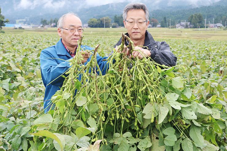 会場の畑で、丹波黒大豆の枝豆を手にする伊勢副会長(左)と荒岡事務局長