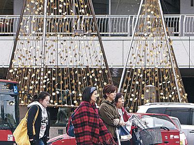 金箔雪吊り設置 金箔雪吊りライトアップ