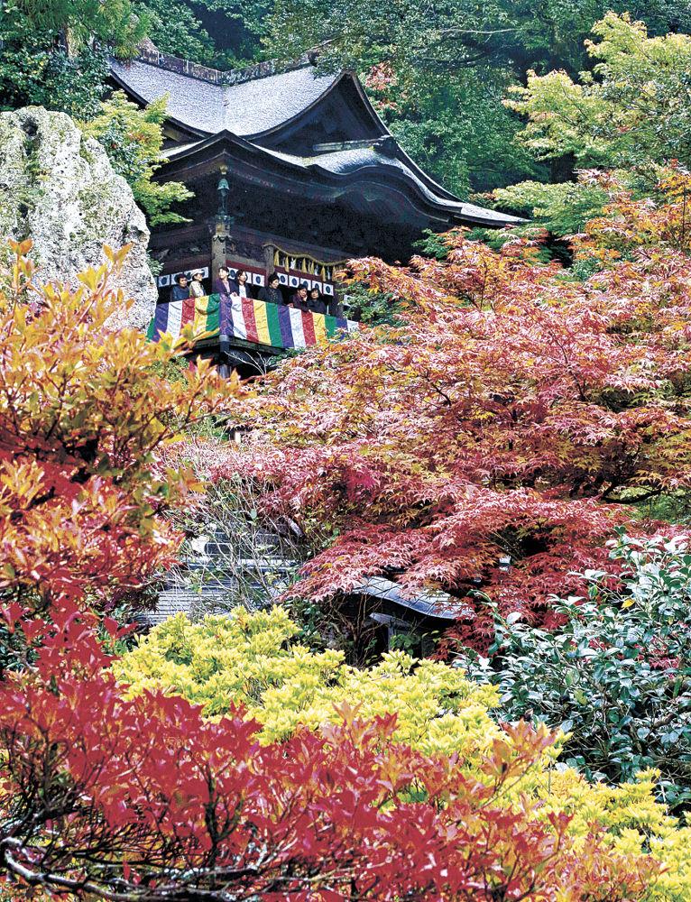 色づき始めた木々が広がる境内=小松市の那谷寺