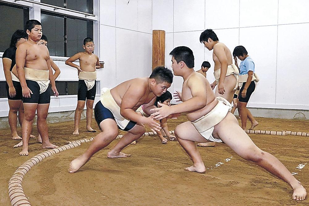 整備された土俵で稽古する生徒と児童=七尾市能登香島中