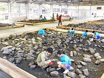 大野で化石発掘を楽しもう 「ホロッサ」28日オープン