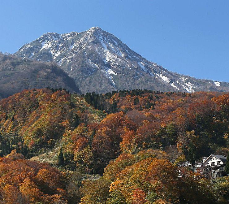 秋真っ盛りの紅葉の上に冠雪した妙高山=26日、妙高市関山