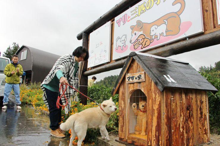 地元住民やマリの子ポチが看板の完成を祝った設置式=23日、長岡市山古志東竹沢