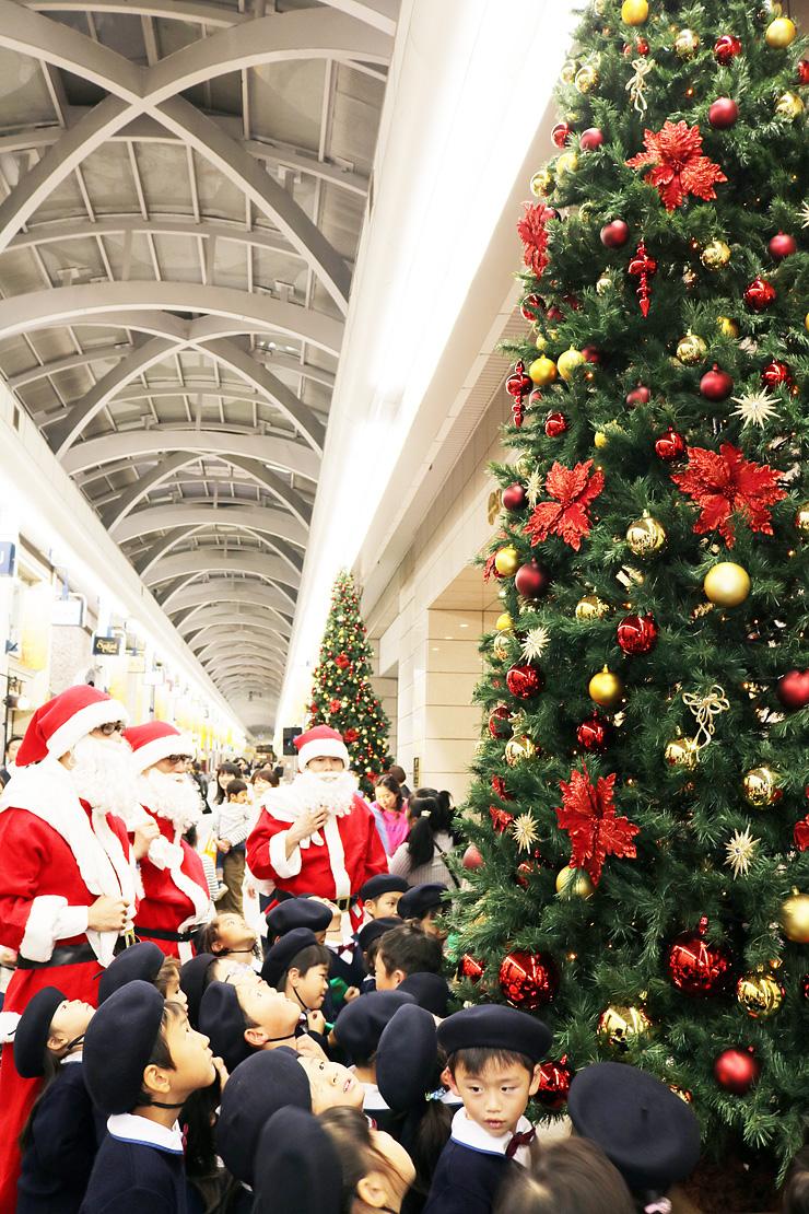 華やかなジャンボクリスマスツリーを見上げる園児ら=富山大和前