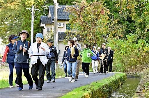 足羽川用水沿いを散策する参加者=3日、福井市脇三ケ町