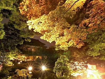 色づく秋しっとり 新潟市中央区