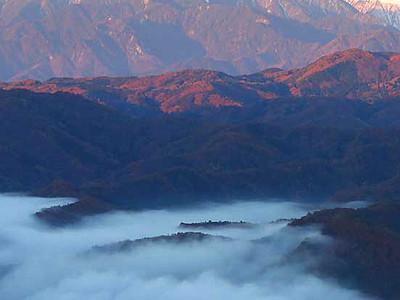 雲海の朝、北ア染まる 長野・大岡のアルプス展望公園