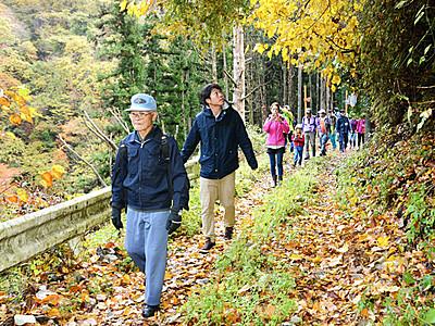 森林鉄道軌道跡歩いて紅葉楽しむ 飯田でツアー