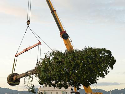 アスナロ神戸港到着 世界一ツリープロジェクト