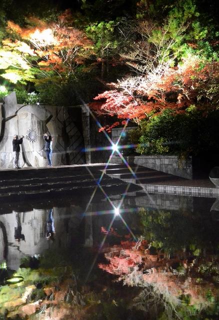 噴水広場の水面に映るライトアップされたヤマモミジ=13日夜、福井県坂井市の県総合グリーンセンター