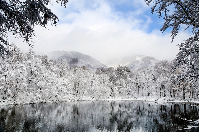 雪化粧した刈込池=16日、大野市上打波(加藤幸洋さん提供)