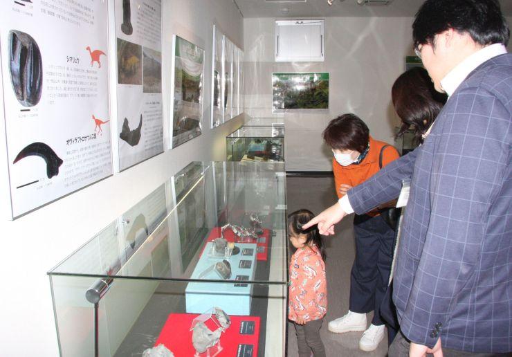 恐竜が生きていた時代の各種の化石などが展示されている特別展=糸魚川市一ノ宮