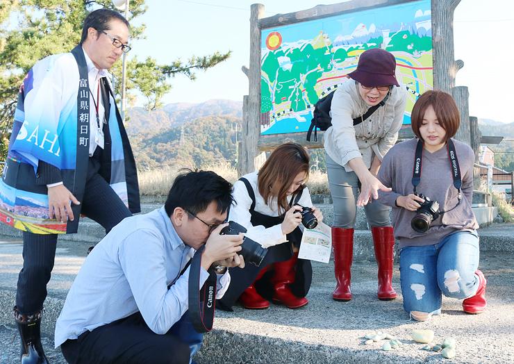 メディア関係者を招き観光地としての魅力に触れてもらったツアー=6日、宮崎海岸