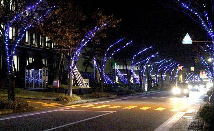 青い光が冬の夜を彩る街路樹イルミネーション=27日、見附市昭和町2