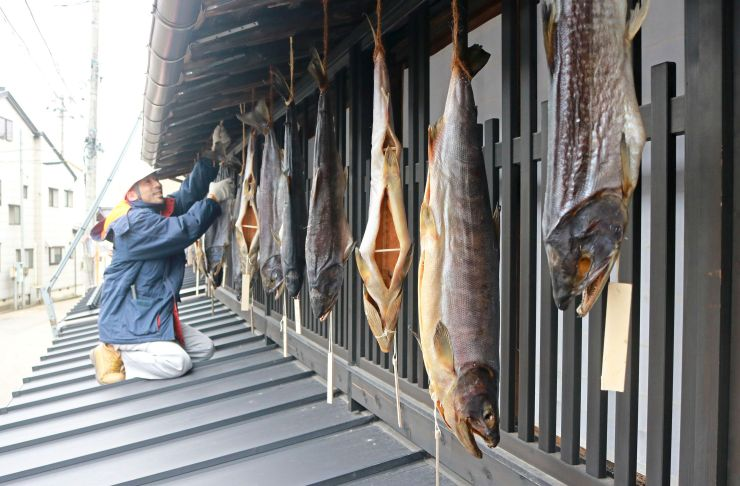 軒下につるされた塩引きザケ=11月30日、村上市庄内町