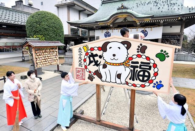 来年のえとの愛らしい犬が描かれた巨大絵馬=1日、福井市大手3丁目の佐佳枝廼社
