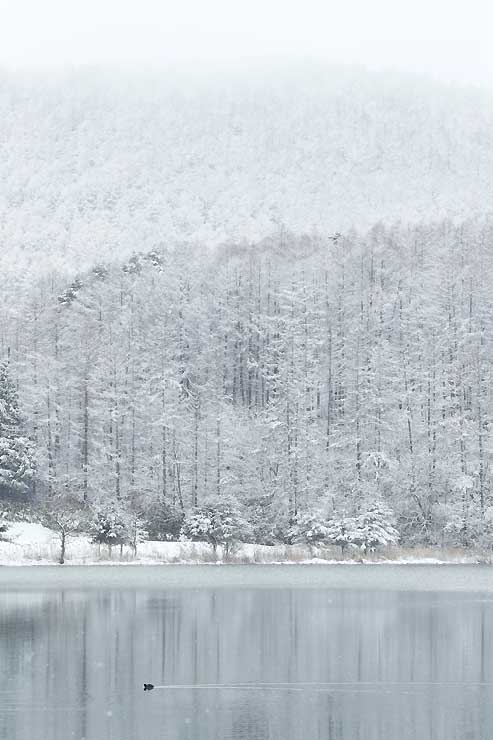 雪化粧し静寂に包まれる霊仙寺湖畔=6日、飯綱町川上