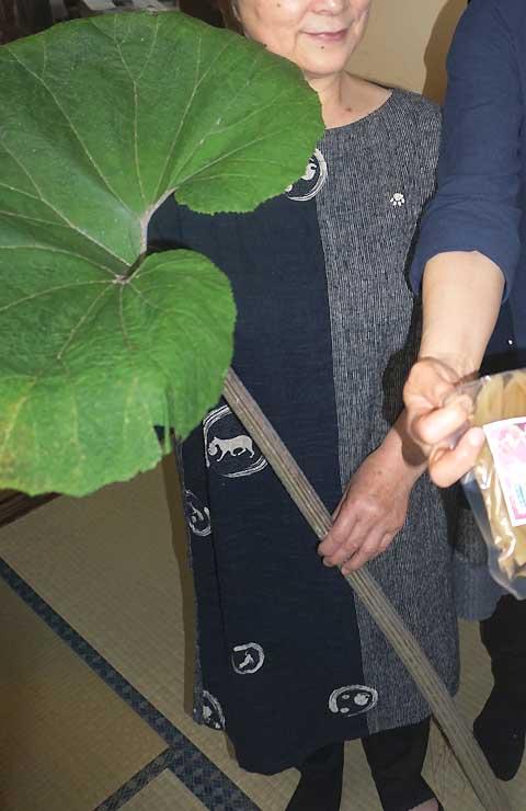 奈良井産のトウブキ