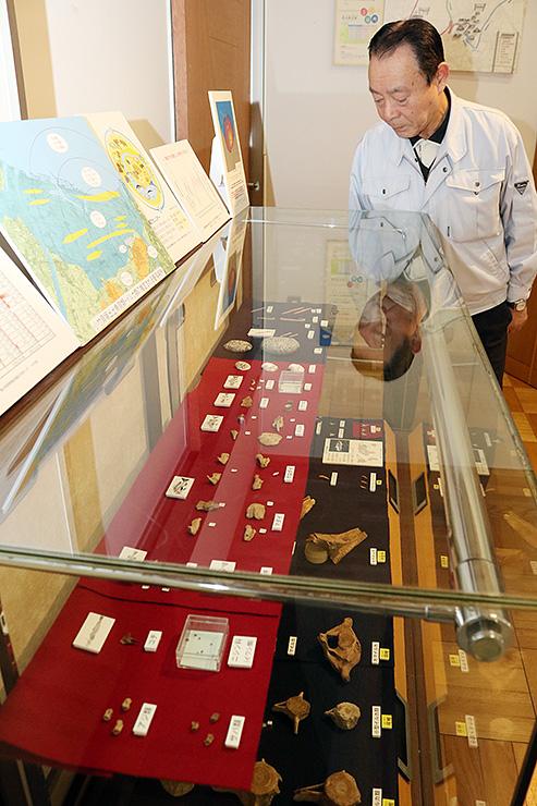 小竹貝塚から出土した魚の骨などを紹介するミニ企画展
