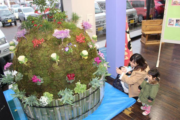 色とりどりの華やかな植物で飾られた巨大コケ玉=見附市学校町1
