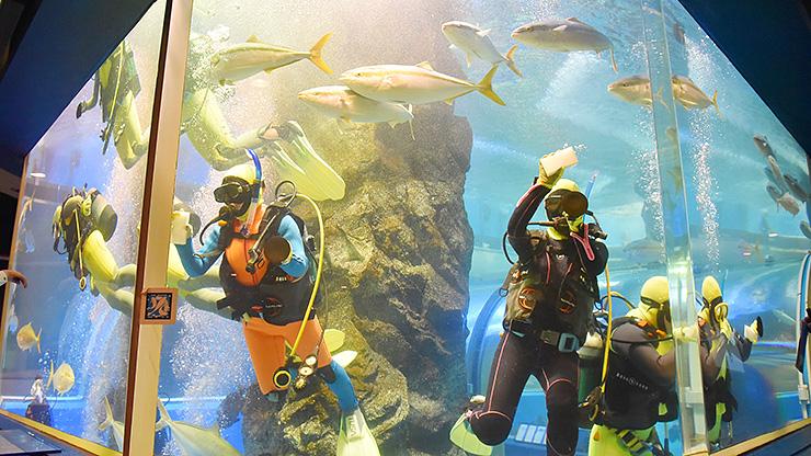 スポンジで水槽を磨く生徒=魚津水族館