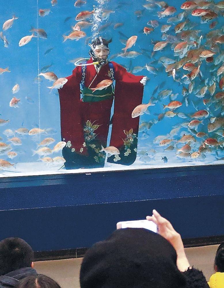 マダイと一緒の水槽の中、振り袖姿で成人式に臨む岡田さん=七尾市ののとじま臨海公園水族館