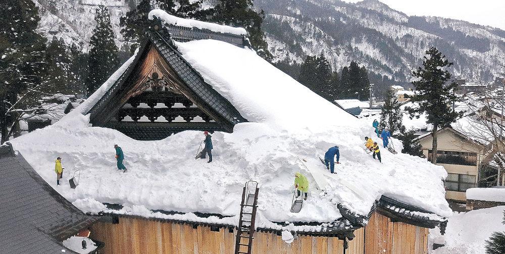 本堂の屋根の雪下ろしをする門徒=白山市白峰の林西寺