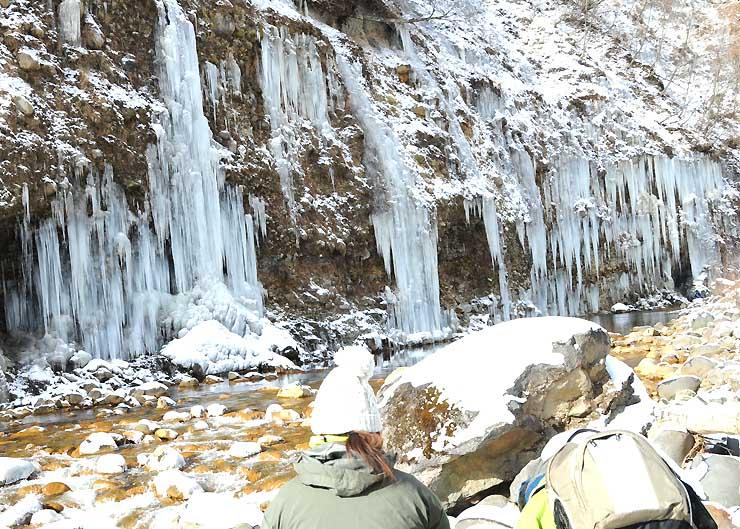 西野川沿いに姿を現した「白川の氷柱群」