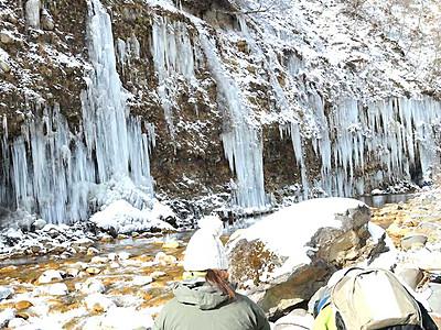 迫り来る氷の牙 木曽「白川の氷柱群」姿現す